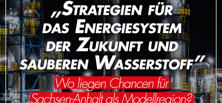 Online-Seminar der Friedrich-Ebert-Stiftung zu grünem Wasserstoff